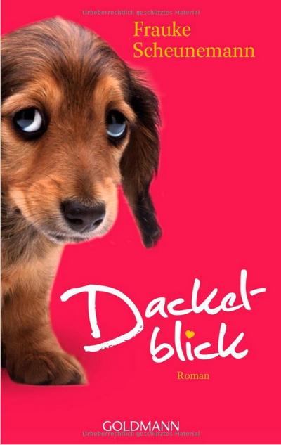 Amazon-Gestöber - #3 - Können Hundeaugen lügen