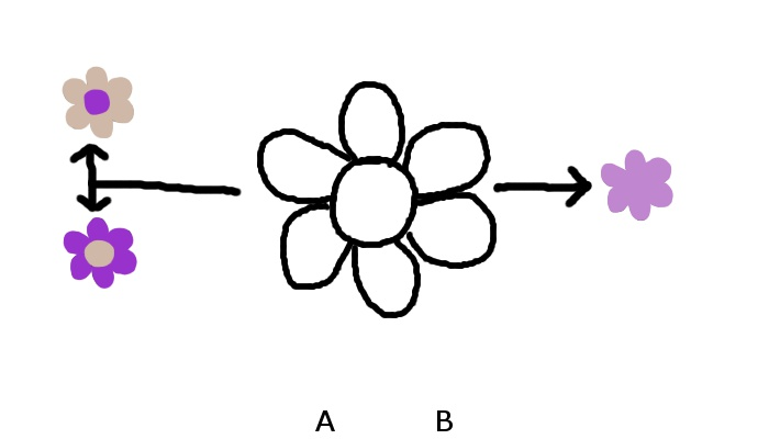 Lilafurzgeblümt