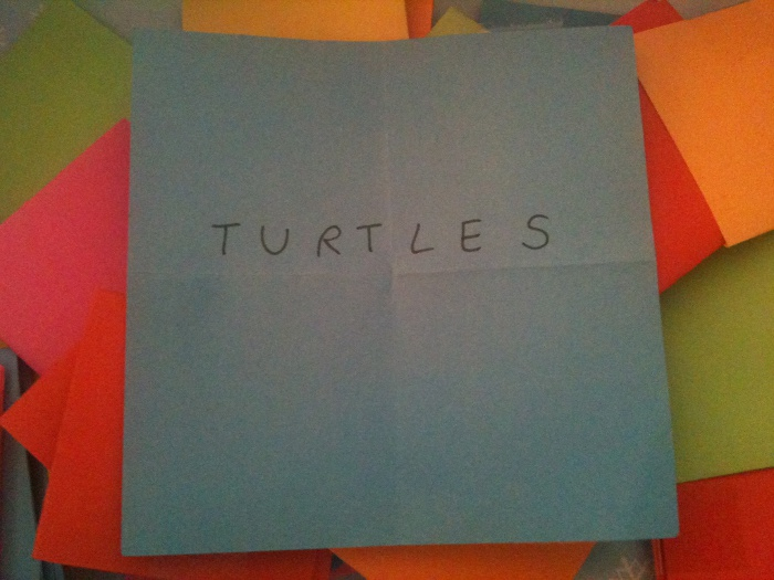 Genürsel 2013 - 23/52 - Turtles